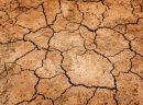 Toprak Elementindeki Burçlar Hangileridir ? Özellikleri Nelerdir?